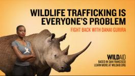 WildAid Danai Gurira Rhino - BlackPanther :30 TV PSA