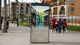 The Big See :30 TV PSA
